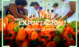 Copy of PLAN DE EXPORTACION