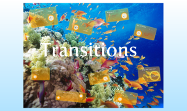 Copy of -Transitions-