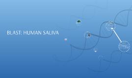 BLAST: HUMAN SALIVA