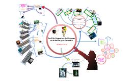 Como debería ser el perfil del ingeniero de sistemas en la Unicor y en Colombia