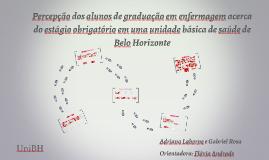 Percepção dos alunos de graduação em enfermagem acerca do estágio obrigatório em uma unidade básica de saúde de Belo Horizonte