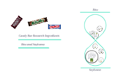 Candy Bar Research Ingredients
