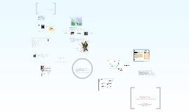 Copy of DigiFair_draft