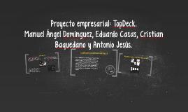 Proyecto empresarial: