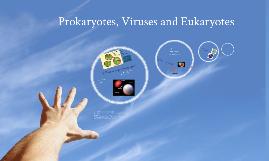 Bacteria, Viruses, and Eukaryotes