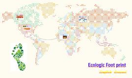 Ecologic Foot print