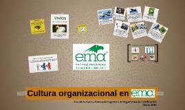 Cultura organizacional en ema