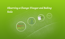 Observing a Change: Vinegar and Baking Soda