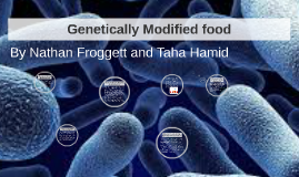 Genetically Modified foodd