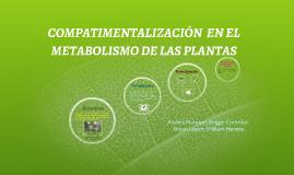 COMPARTIMENTACION EN EL METABOLISMO DE LAS PLANTAS