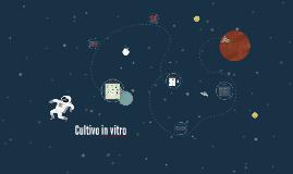 Copy of Cultivo in vitro
