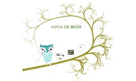 Copy of Copy of COVA DE  EIRÓS