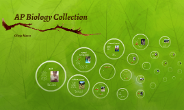 AP Biology Collection
