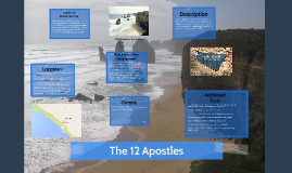 Copy of The 12 Apostles