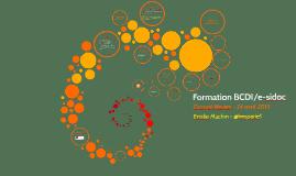 Copy of Formation BCDI/e-sidoc
