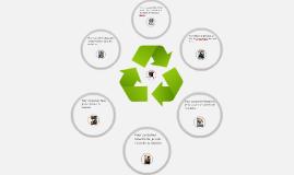 Projet: L'écologie