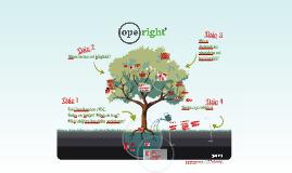 Operight-tietoisku 2014