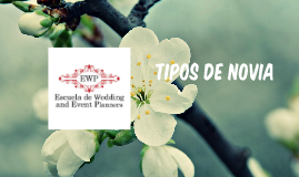 TIPOS DE NOVIA