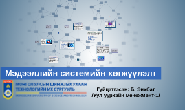 Мэдээллийн системийн хөгжүүлэлт
