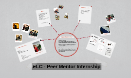 The Peer Mentor Internship