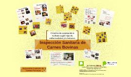 Inspección Sanitaria de Carnes Bovinas