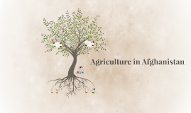 Agriculture in Aghanistan