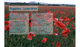 Poppies - Weir