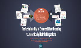 The Sustainability of Modern Plant Breeding