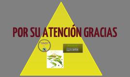 """Copy of """"LAS ADECUACIONES CURRICULARES EN LA EDUCACIÓN PREESCOLAR PARA NIÑAS Y NIÑOS CON NECESIDADES EDUCATIVAS ESPECIALES"""""""