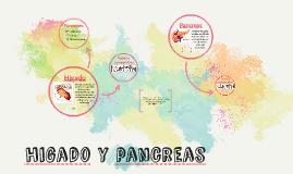Higado y Pancreas