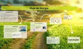 Copy of Flujo de Energía