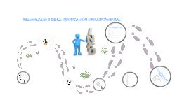 recopilacion de informacion auditoria