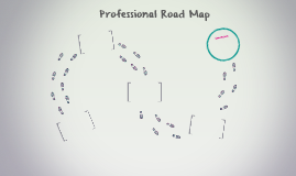Professional Road Map