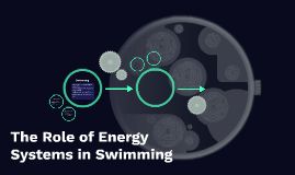 The Role of Energy Systems in Swimming