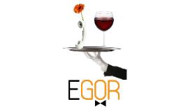 Accountants kiezen voor e-GOR !