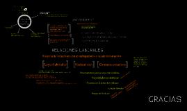 Copy of Administracion de los recursos humanos