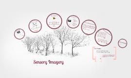 Sensory Imagery