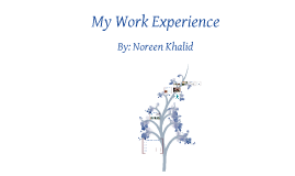 My Work Experience