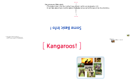 Copy of Kangaroos !