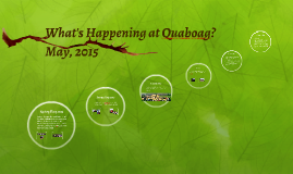 What's Happening at Quaboag?
