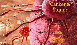 Copy of Cancer & Tumor