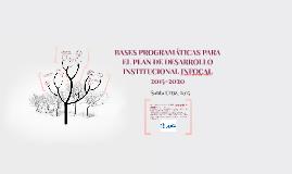 BASES PROGRAMÁTICAS PARA EL PLAN DE DESARROLLO INSTITUCIONAL