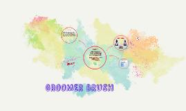 Copy of GROOMER BRUSH