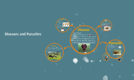 Diseases and Parasites