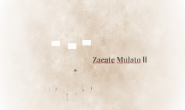 Zacate Mulato ll