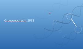 Groepsopdracht SPSS
