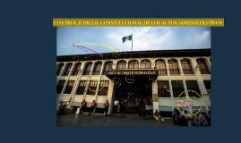 Copy of EL PROCESO CONSTITUCIONAL DE AMPARO