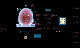Hersenspinsels en Boeiend onderwijs