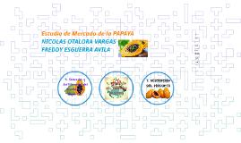ESTUDIO DE MERCADO PAPAYA