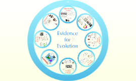 Copy of AP Bio- Evolution 3:  Evidence of Evolution